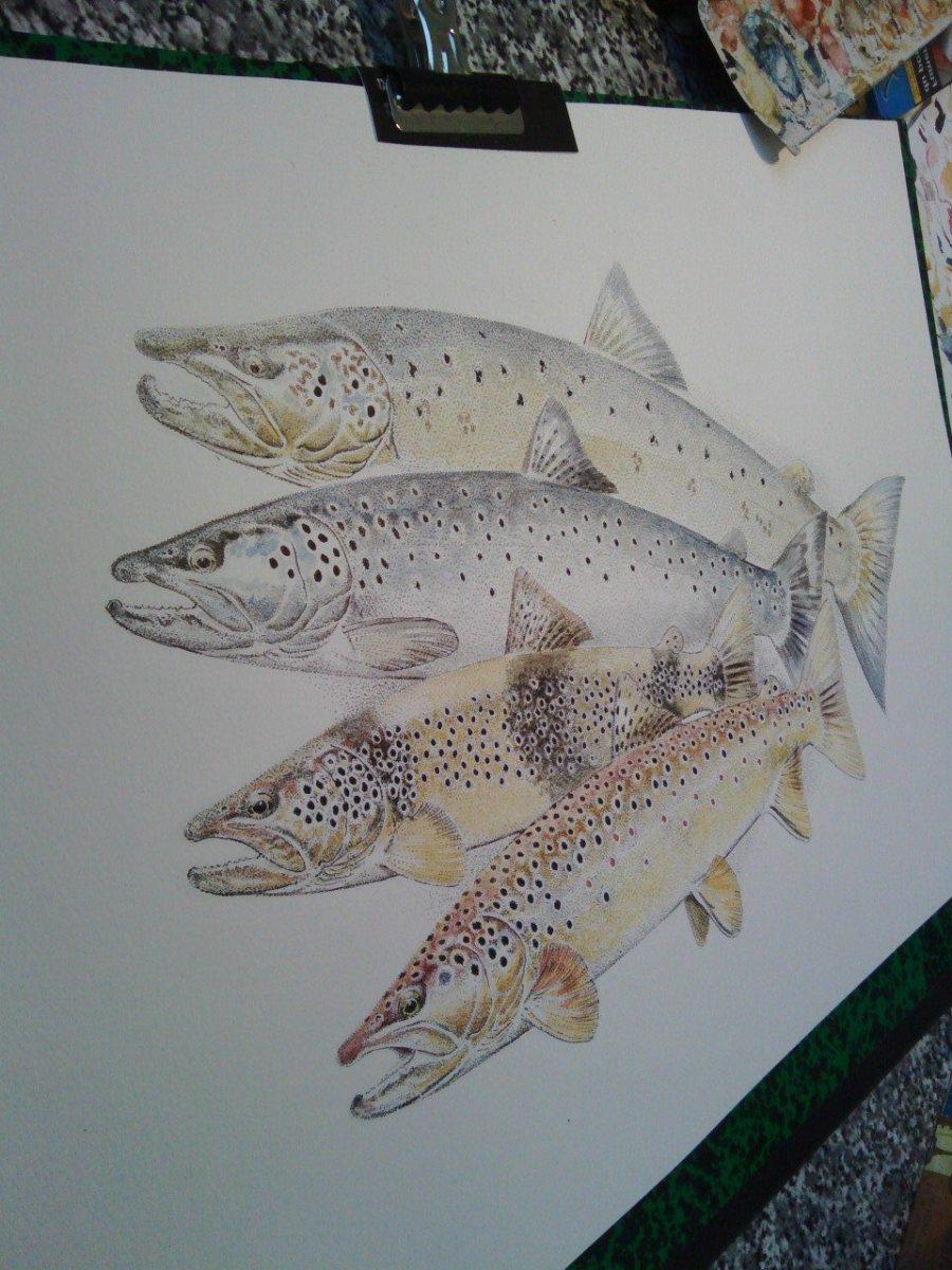 Victor Nowakowski : l'homme qui dessinait des poissons